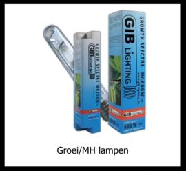 Groei / MH lampen
