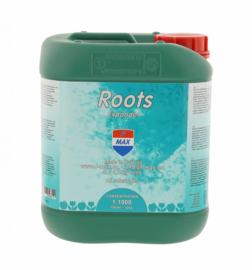 Roots Expander 5L