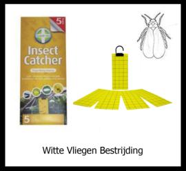 Witte Vliegen Bestrijding