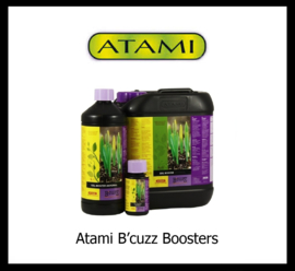 ATAMI B cuzz Boosters