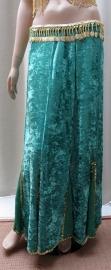 fluwelen rok groen1/goud