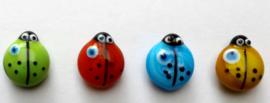magneet lieveheersbeestje