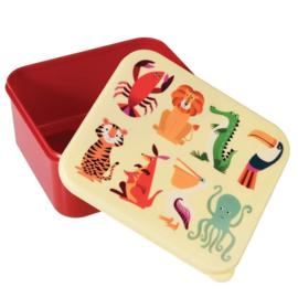 Lunchbox wilde dieren, Rex London