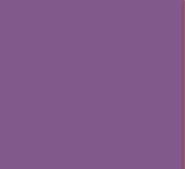 C6 Sanjeevini - Paars