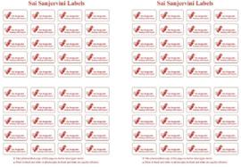 Werkkaart 8 - Sai Sanjeevini Labels 80x