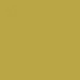 C9 Sanjeevini - Goud