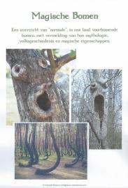 """Werkboek 3 """"Magische Bomen"""""""