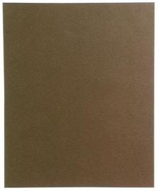 C11 Sanjeevini - Bruin