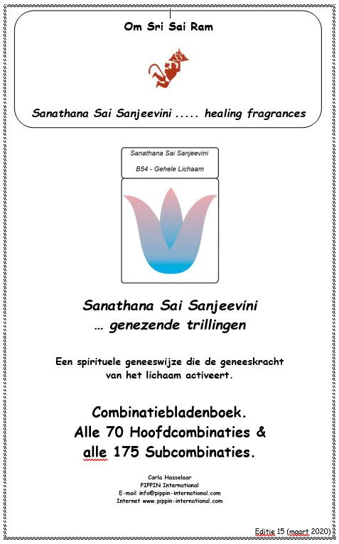 Combinatiebladenboek 2