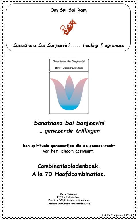 Combinatiebladenboek 1