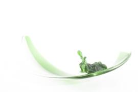 Boomoorschaal groen