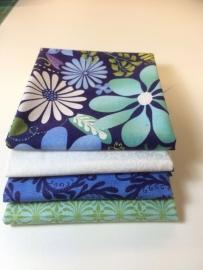 Pakketje Fris & Fruitig blauw