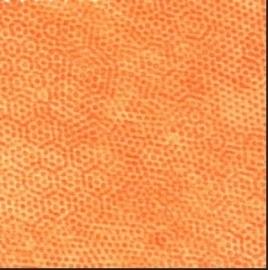 Dimples Oranje - 2806