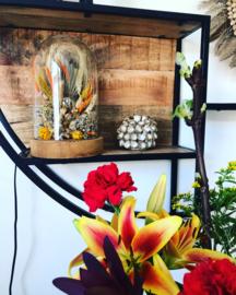 DIY pakket droogbloemen lamp stolp