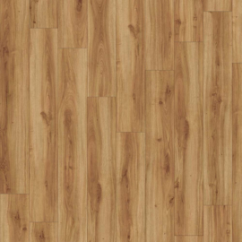 Moduleo Transform Classic Oak - 24235