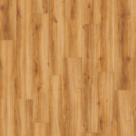 Moduleo Transform Classic Oak - 24438