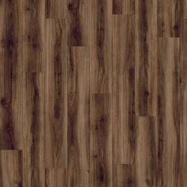 Classic oak - 24877