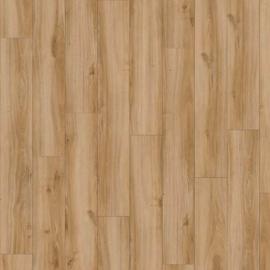 Classic oak - 24837