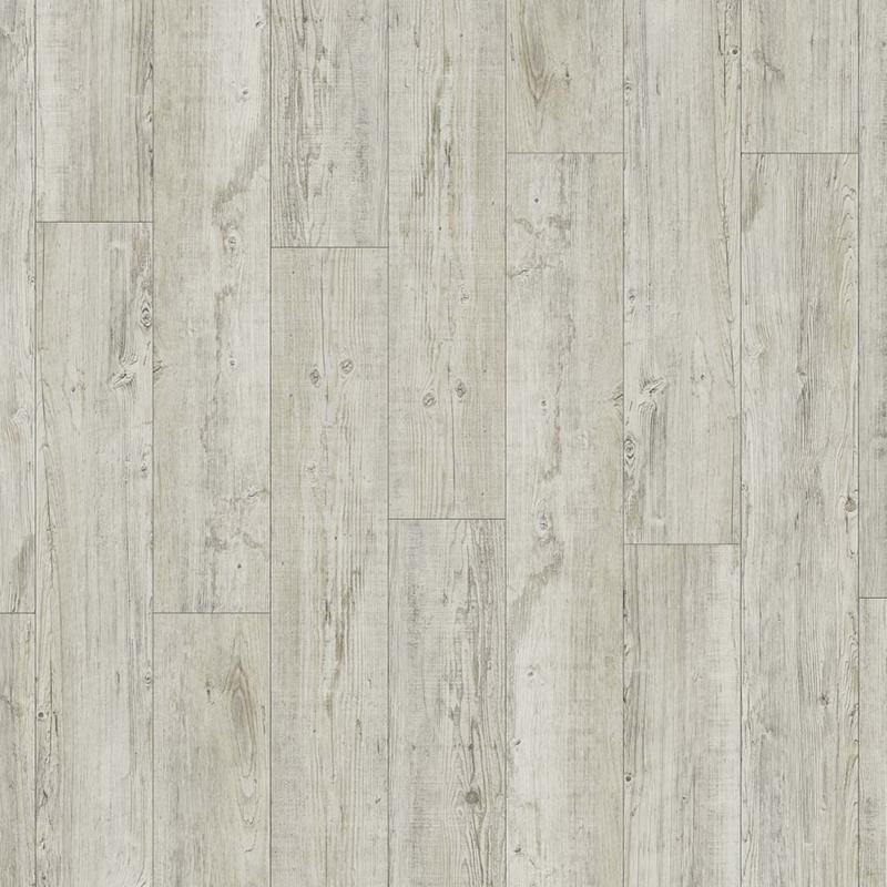 Moduleo Transform Latin Pine - 24142