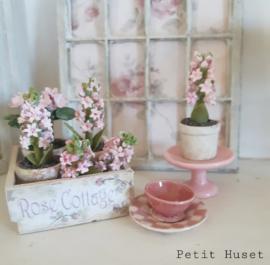 Roze Taart Plateau