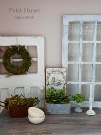 Sfeervol ,Landelijk Display met Plant