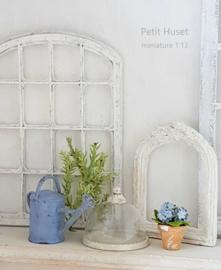 Klein Blauw Hortensia Plantje in Pot.