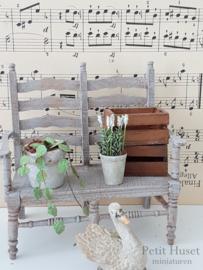 Lavendelplantje Wit.