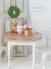 Roze Hortensia Plantje