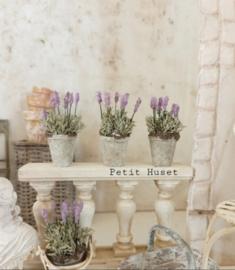 Potje met Lavendel