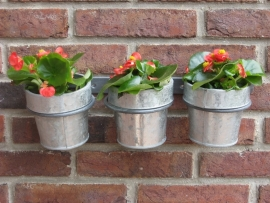 Wandhouder (met 3 potten)