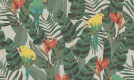 Curiosa - Arcadia 13570 - Arte Wallpaper