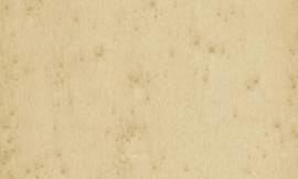 37518 Stellar
