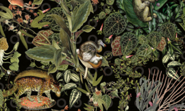 Menagerie of Extinct Animals MO2071 - Moooi by Arte Wallpaper