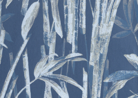 22120 - Canne Bambu