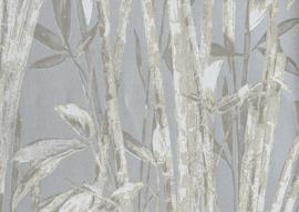 22122 - Canne Bambu