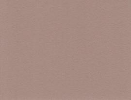 Chocolat Chaud 03 - Amazona krijtverf