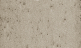 37508 Stellar