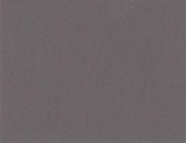Black Pearl 10 - Amazona krijtverf