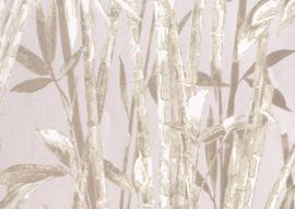 22124 - Canne Bambu