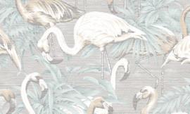 Curiosa - Flamingo 31542 - Arte Wallpaper