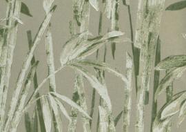 22121 - Canne Bambu