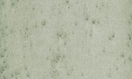 37512 Stellar