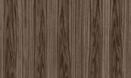 42053 Roots - Ligna - Arte Wallpaper