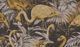 Curiosa - Flamingo 31540 - Arte Wallpaper