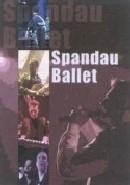 Spandau Ballet - Live in Concert  (1DVD)