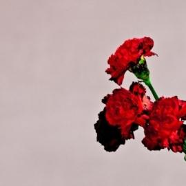 John Legend - Love In The Future (1CD)
