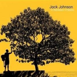Jack Johnson - In Between Dreams (1CD)