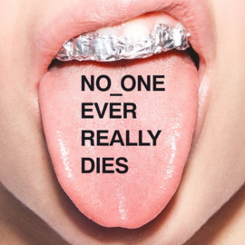 N.E.R.D. - No_One Ever Really Dies (1CD)