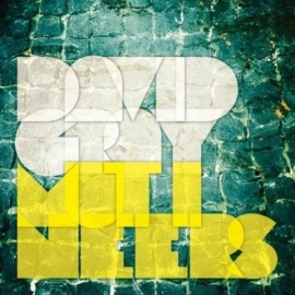 David Gray - Mutineers (2LP)