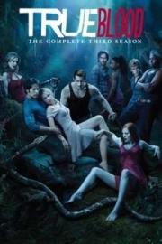 Tv Serie - True Blood Seizoen 3  (5DVD)